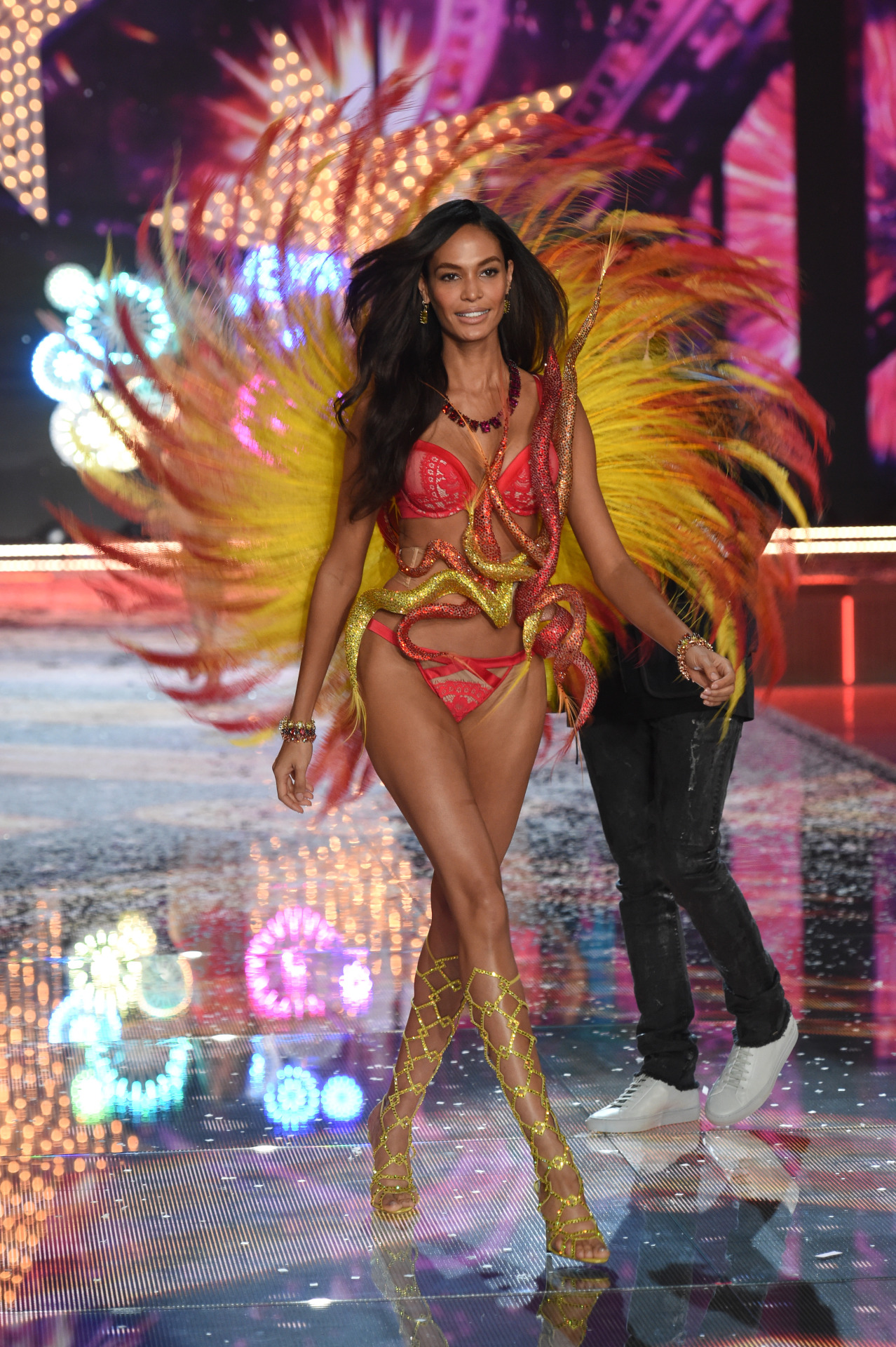 Victoria's Secret Fashion Show 201514
