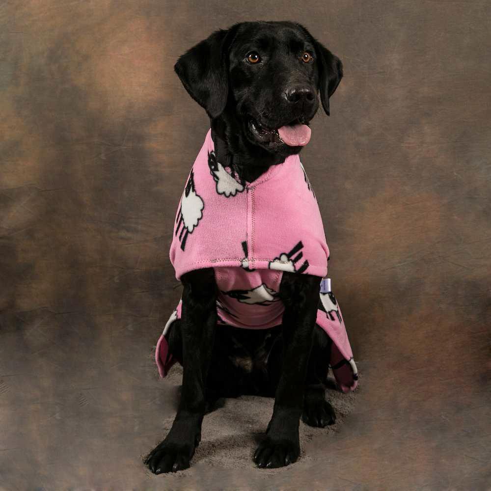 Pink Sheep Coat (Image: snuggyhoods.com)