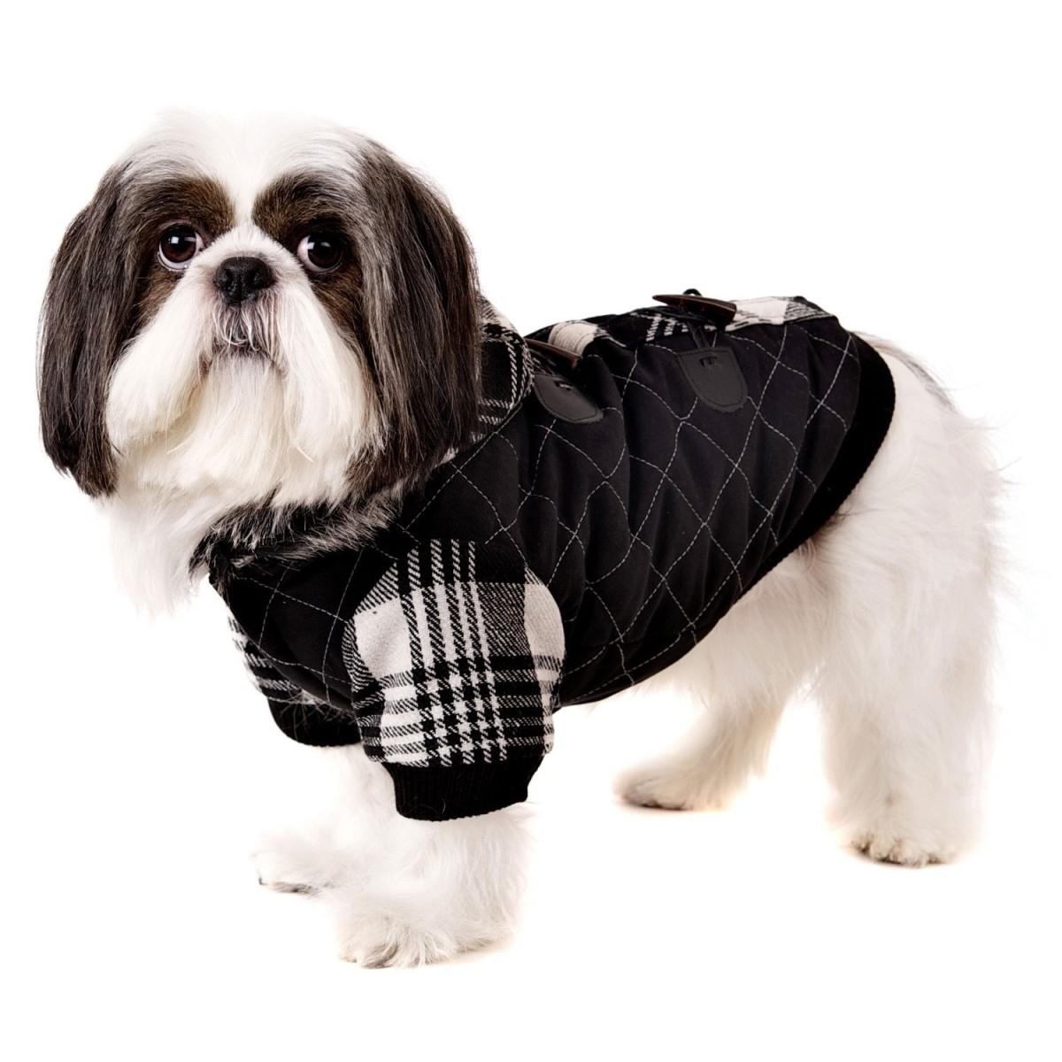Luxury Leather Coat (Image: petticoats.com)